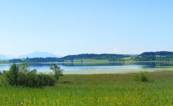 Blick auf den Bannwaldsee